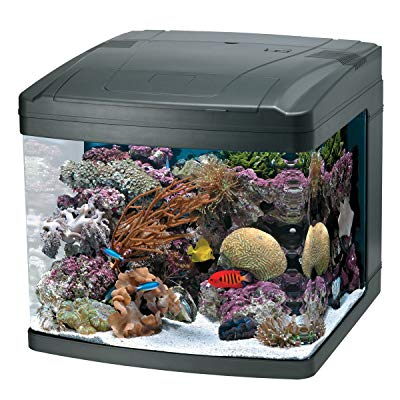 OCEANIC BIOCUBE SYSTEM - SIZE 29